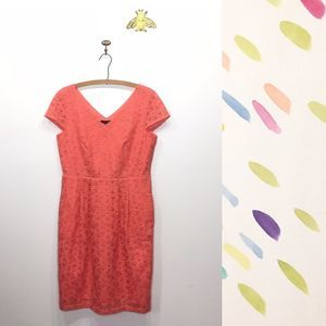 Lands' End orange fitted lace overlay dress 8 0146